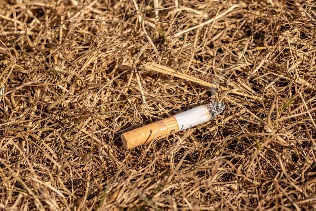 התשובות שדורית סלינגר צריכה לבקש מהמוסדיים שהשקיעו בהפצת סיגריות